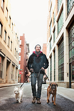 how to become a dog walker in nyc