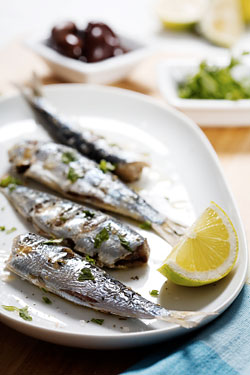 Breaking Scandal: Does Frank Bruni Hate Sardines?
