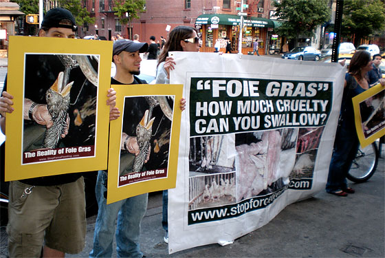 Thomas Keller&#8217;s Feathers Are Unruffled by Foie Gras Protesters