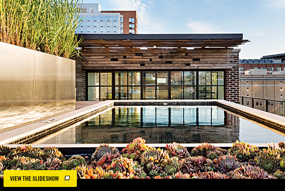 New York Design Hunting - A Rooftop Pool in Chelsea -- New York Magazine