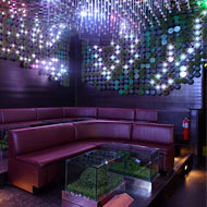 Jon B Shows Off His Ecofriendly Nightclub, Greenhouse