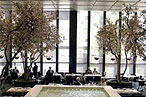 Four Seasons Turns 50