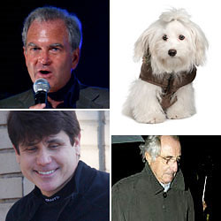clockwise from left: Dreier, a puppy symbolizing Butcho, Madoff, and Blagojevich