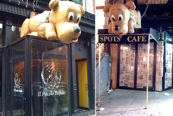 Spots Finds a New, Lonely Home on Mulberry Street