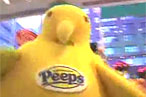 NYC Food Film Festival Returns With Peeps Documentary