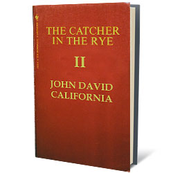 the catcher in the rye holden 10 years later Chapter 6 stradlater returns late that night, thanks holden for the jacket and asks if he wrote the composition for him when stradlater reads it, he gets upset at holden, because it is simply about a baseball glove irritated that stradlater is upset, holden tears up the composition immediately holden starts.