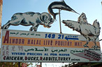 Halalarious: Gotta Love Those Live-Animal Markets