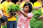 Michelle Obama&rsquo;s Overachieving Garden