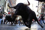 The Bulls Run at Toro Tonight