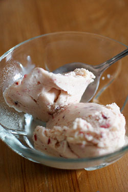 Sign Up (Fast!) for Homemade, Home-Delivered Ice Cream