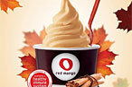 Pumpkin Patch: Concretes, Blizzards, Custard, Gelato, and Fro-Yo