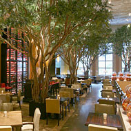 First Look at the Garden, Now Serving in the Four Seasons