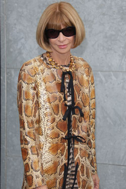 Anna Wintour Takes a Front-Row Seat at the Miss Lily's Show