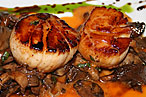 Damien DiPaola&#39;s scores with seared scallops with a spicy grapefruit glaze.
