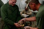 Operation Porchetta: How Sara Jenkins Fed the Marines in Afghanistan