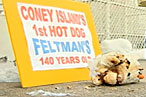 Fossilized 140-Year-Old Hot Dog Unearthed in Coney Island [Updated: Hoax]