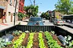 Find Out How to Turn a Pickup Truck Into a Farm Tonight