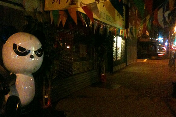 Mystery of the Kung Fu Bing Panda Deepens in Bensonhurst