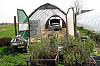 The greenhouse at the Mecox Bay farm stand.