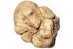 Gorge on White Truffles at Sapori d'Ischia's Recession-Friendly Truffle Dinner