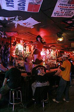 Coyote Ugly Situation Isn't Pretty
