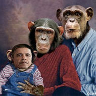 GOP Official Who E-mailed an Obama Monkey Photo Wont Resign