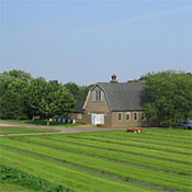 Queens County Farm Museum Museums New York Magazine