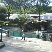 Central Park Zoo Zoos And Aquariums New York Magazine