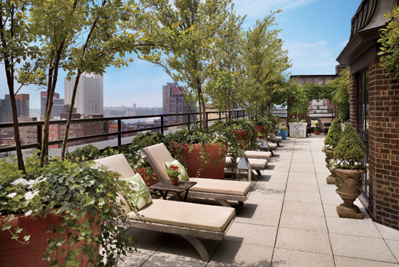 Photo gallery for 1 the terrace