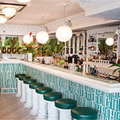 Mother Of Pearl East Village New York Magazine Bar Guide
