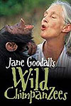 jane goodall south africa
