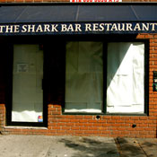 The Shark Bar Photo