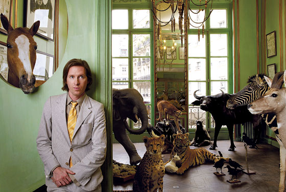 wes anderson wiki