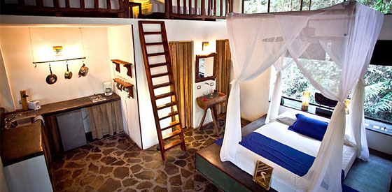 Canaima Chill House S Suites Are Inspired By Treehouses
