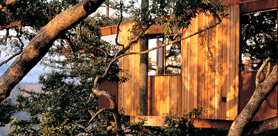 A Tree House Room At The Post Ranch Inn