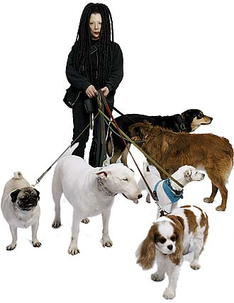Look Book Goth Dog Walker Suzanne New York Magazine