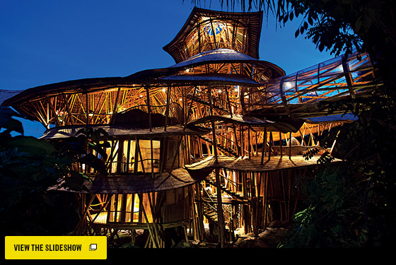 Global Urban Design A Tree House In Bali New York Magazine