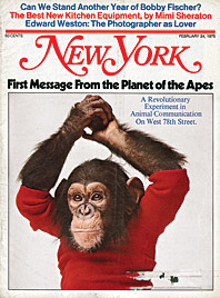 The Tragic Tale of a Chimp Raised As a Boy in 'Project Nim' -- New