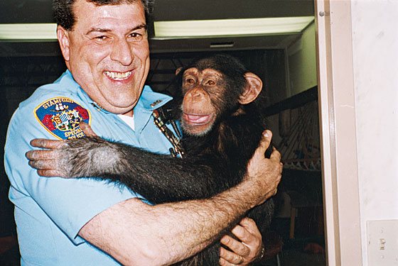 Understanding Travis the Chimp and His Mother, Sandy Herold -- New