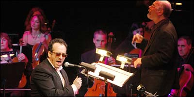 Elvis Costello's Il Sogno - Tone Test - New York Magazine