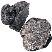 Black Truffles In Season