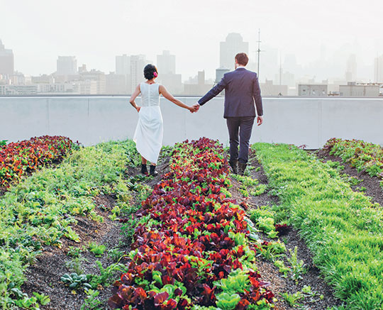 Nymag Real Weddings: New York Wedding Guide